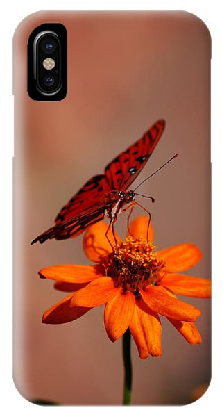 Orange Butterfly Orange Flower IPhone Case