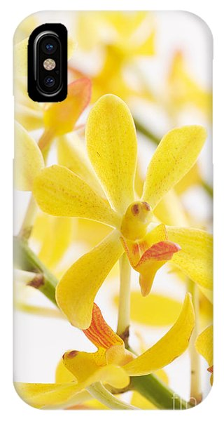 Orchid Bunch IPhone Case
