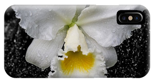 Orchid Shower IPhone Case