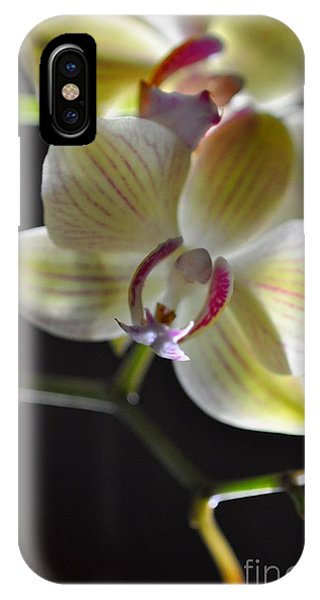 Orchidee IPhone Case