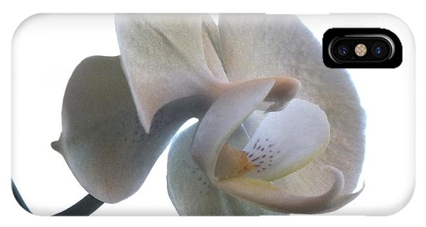 Horticulture iPhone Case - Orchids 1 by Mike McGlothlen