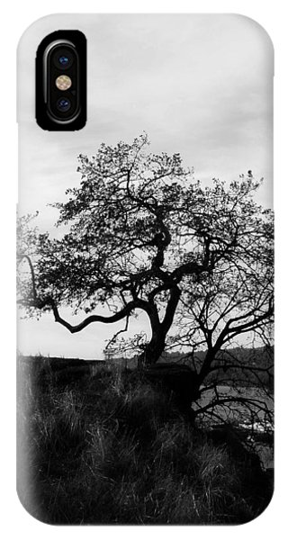 Oregon City Tree IPhone Case