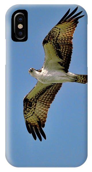 Osprey Above IPhone Case