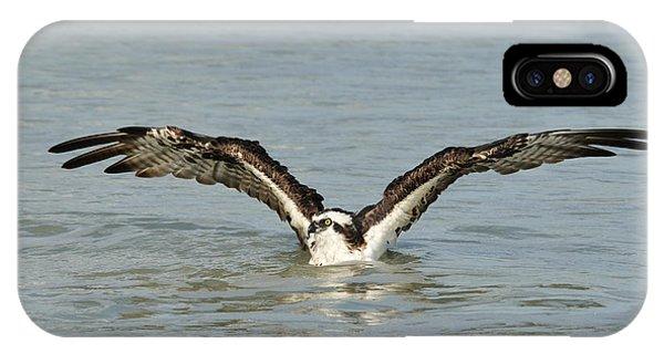 Osprey Bathing IPhone Case