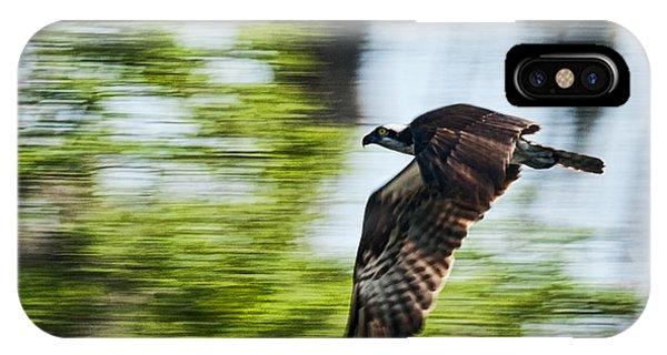 Osprey In Flight Phone Case by Frank Feliciano