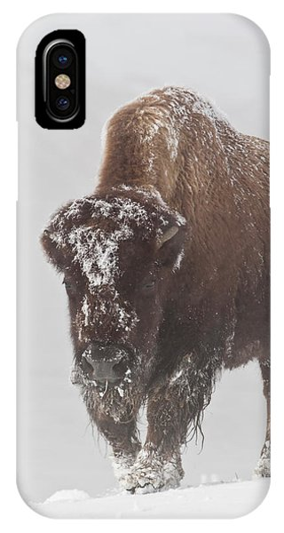 Out Of The Fog IPhone Case