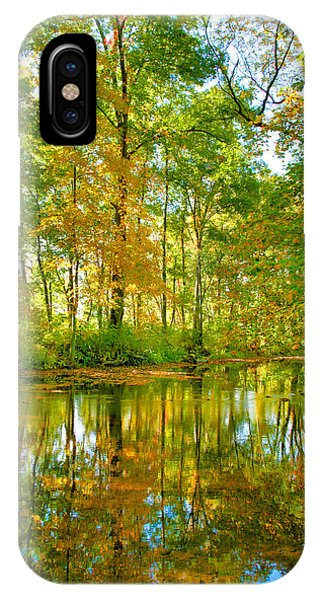 Owens Creek In Autumn I IPhone Case