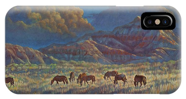 Painted Desert Painted Horses IPhone Case