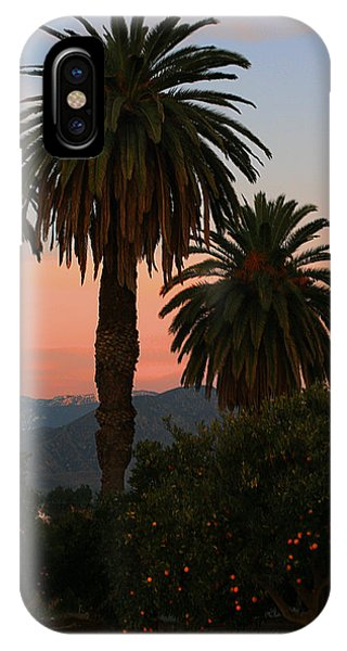 Palm Trees And Orange Trees IPhone Case