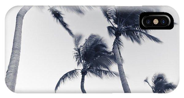 Palms 5 IPhone Case