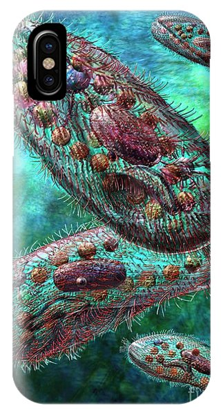 Paramecium IPhone Case