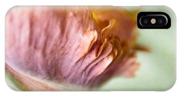 Parrot Tulip Fringed Petal Detail IPhone Case