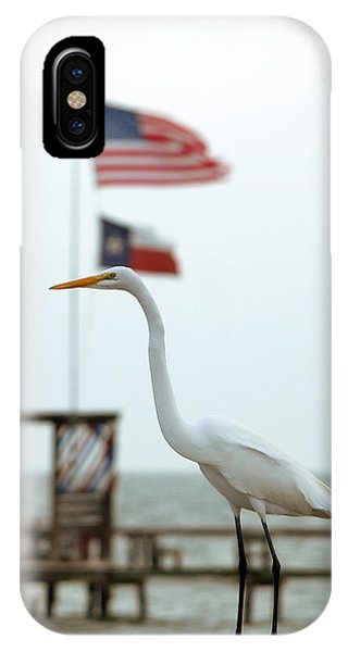 Patriotic IPhone Case