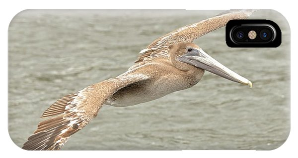 Pelican On The Water IPhone Case