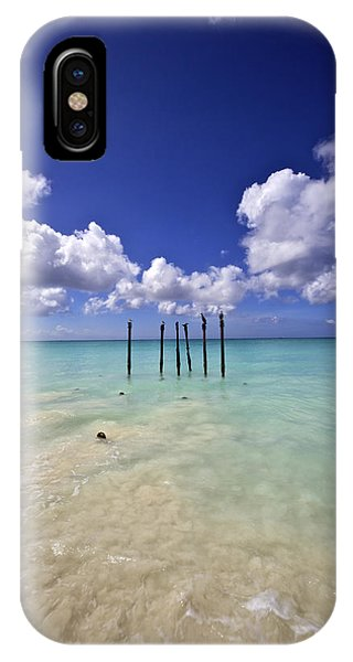 Pelicans Of Sunny Aruba IPhone Case