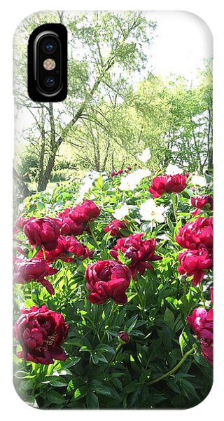 Peony Garden Path IPhone Case