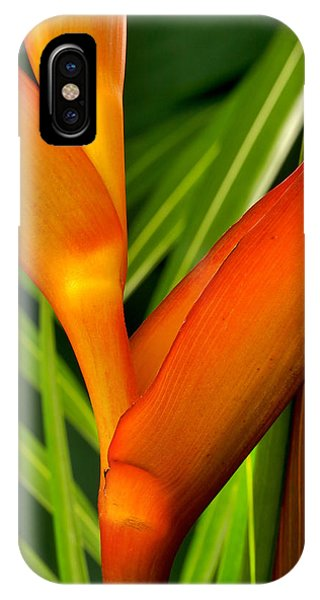 Photograph Of A Parrot Flower Heliconia IPhone Case