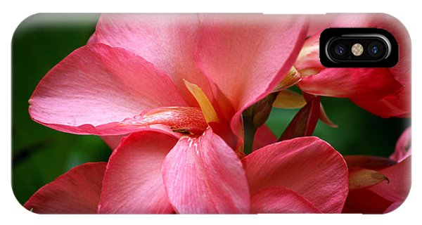 Pink Canna IPhone Case