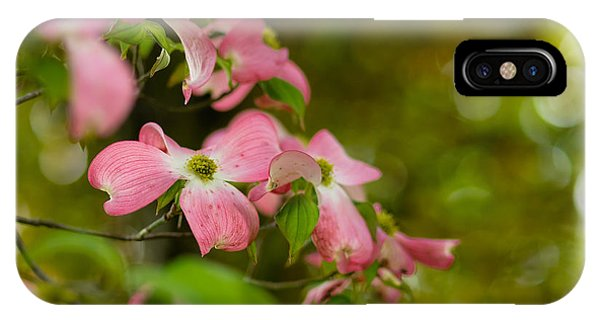 Pink Dogwood Blooms IPhone Case