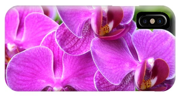 Pink Orchids B IPhone Case