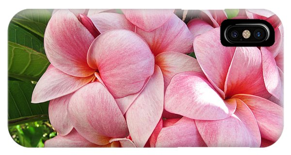 Pink Plumerias IPhone Case