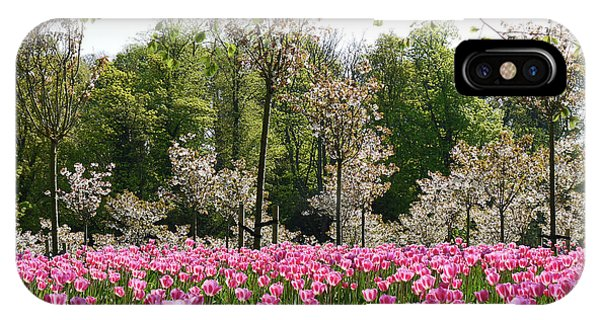 Pink Tulips And Blossom 2 IPhone Case