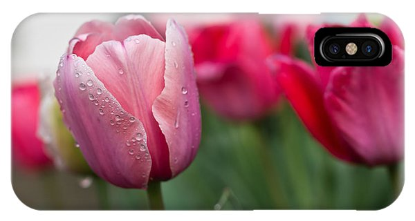 Pink Tulips With Water Drops IPhone Case