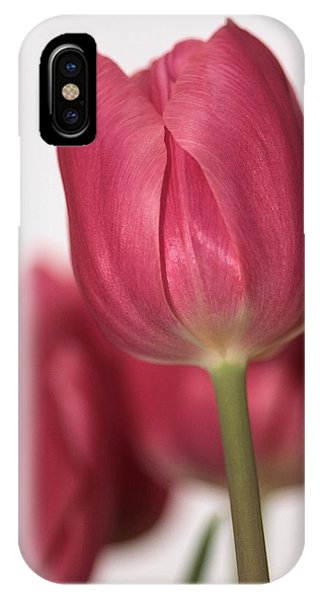 Pink Tullips IPhone Case