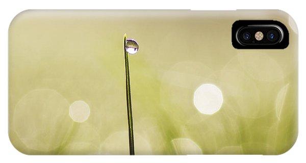 Wiese iPhone Case - Pionier by Tanja Riedel