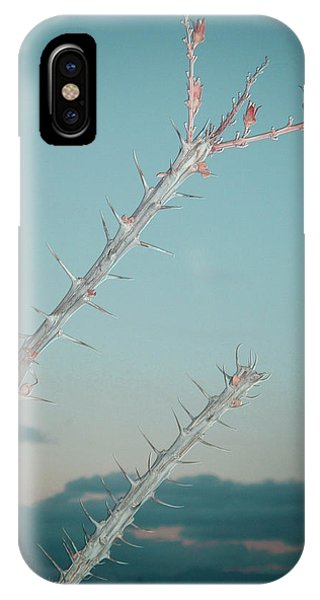 Death Valley iPhone Case - Plant by Naxart Studio