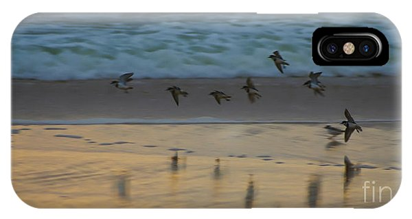 Plovers At Play On A Stormy Morning IPhone Case