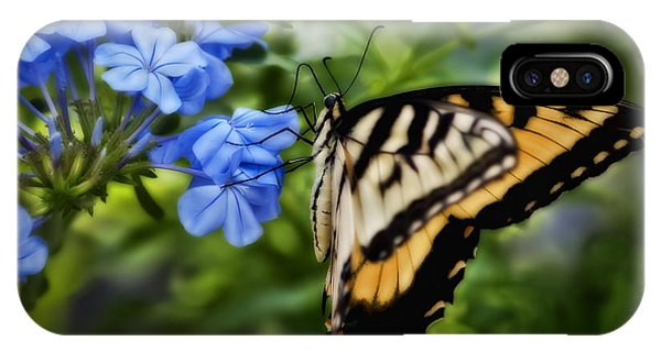 Plumbago And Swallowtail IPhone Case
