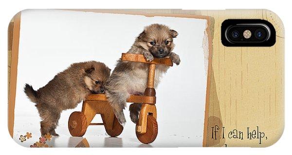 Pomeranian iPhone Case - Pomeranian 1 by Everet Regal