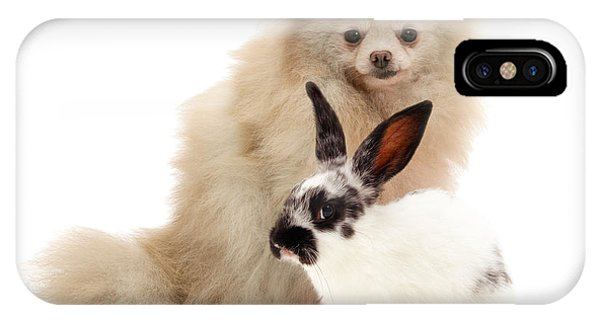 Pomeranian iPhone Case - Pomeranian And Black-and-white Spotted by Jane Burton