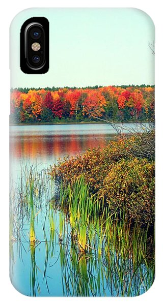 Pond In The Woods In Autumn IPhone Case