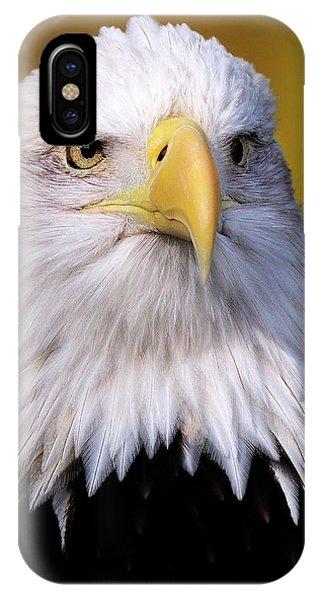 Portrait Of A Bald Eagle IPhone Case
