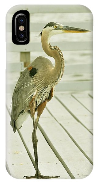 Portrait Of A Heron IPhone Case