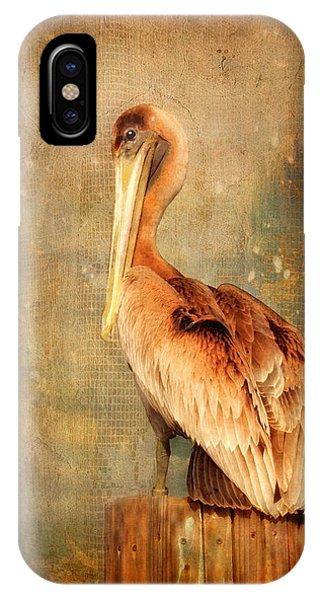 Portrait Of A Pelican IPhone Case