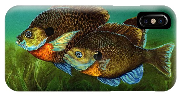 Pretty Little Panfish IPhone Case