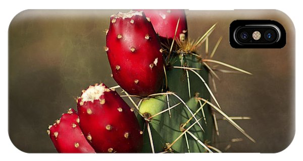 Prickley Pear Fruit IPhone Case