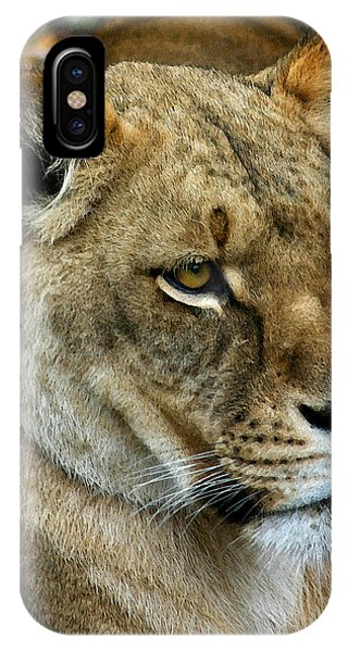 Proud Lioness IPhone Case