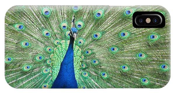 Proud Peacock IPhone Case
