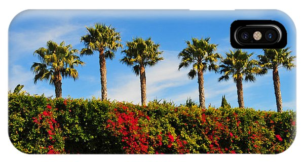 Pt. Dume Palms IPhone Case
