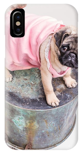 Pug iPhone X Case - Pug Puppy Pink Sun Dress by Edward Fielding