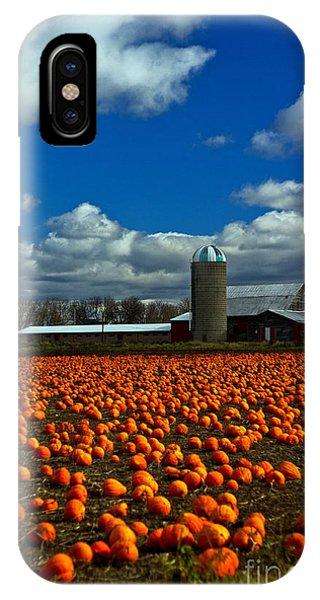 Pumpkin Farm IPhone Case