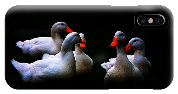 IPhone Case featuring the photograph Quackery Quintet by Ola Allen