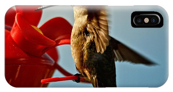 Humming Bird iPhone Case - Quick Stop by Susan Capuano