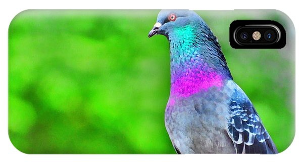 Rainbow Pigeon IPhone Case