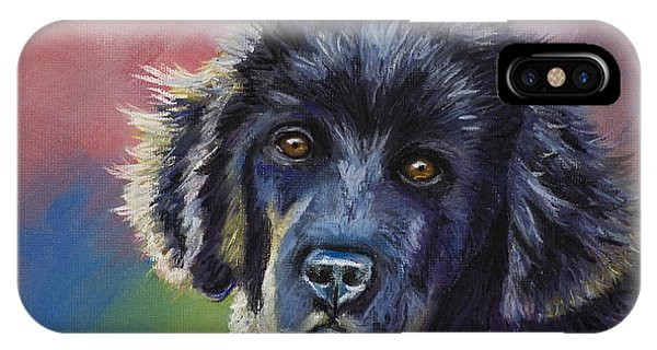 Rainbows And Sunshine - Newfoundland Puppy IPhone Case
