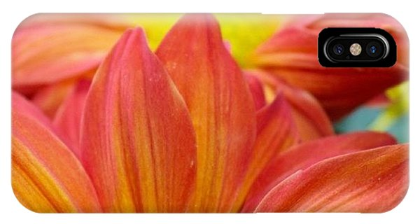 Petals iPhone Case - Red And Yellow Flowers   by Justin Connor